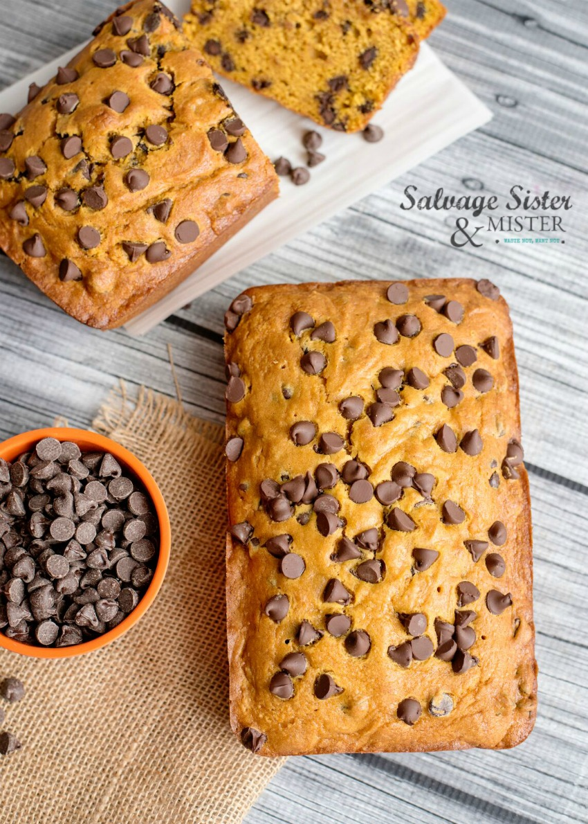 quick bread recipe perfect for fall - chocolate chip pumpkin bread on salvagesisterandmister.com