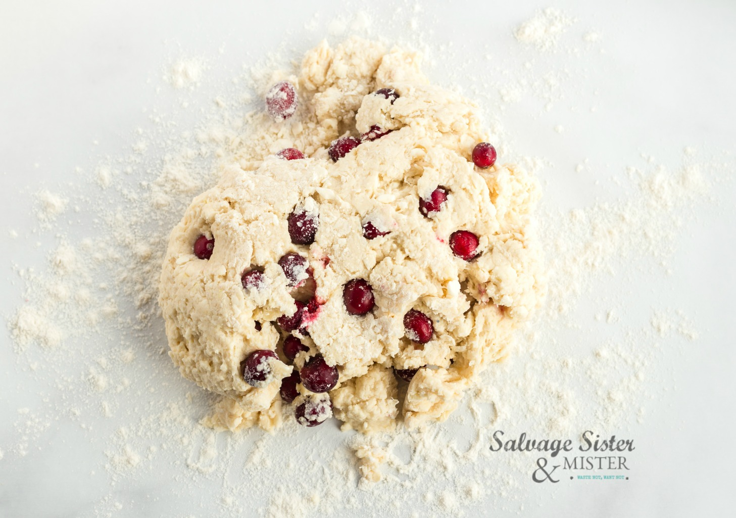 dough for cranberry lemon squarees on salvagesisternadmister.com