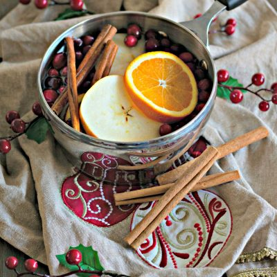 a cranberry citrus simmering potpourri for your home - all natural scent of the holidays on salvagesisterandmister.com