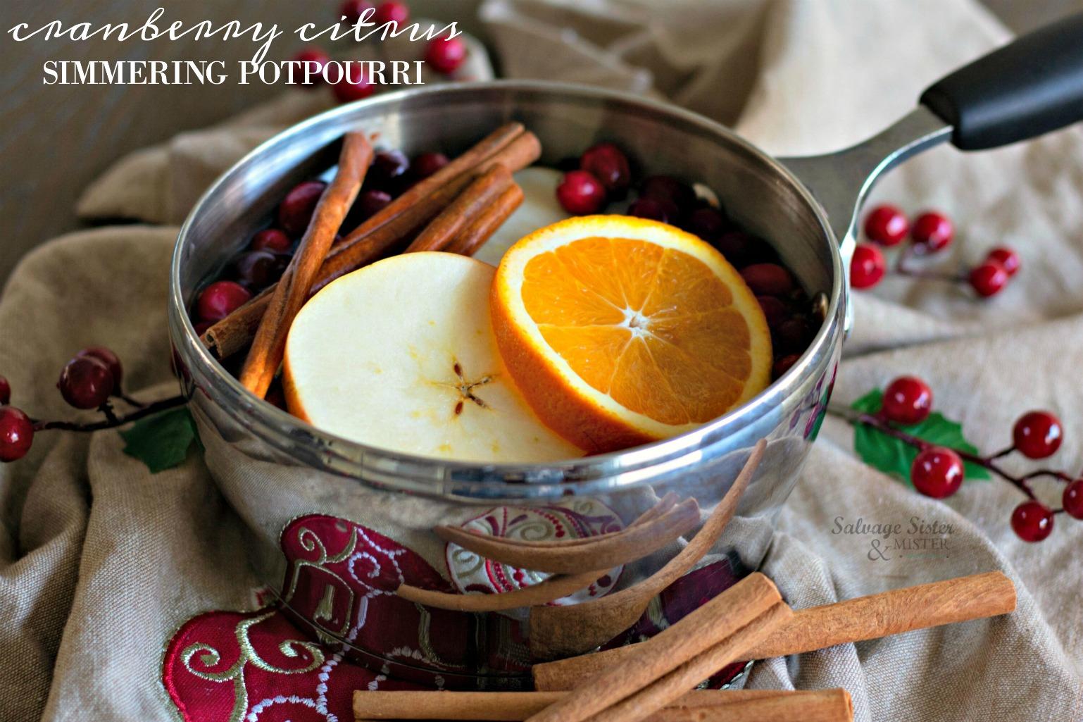 DY cranberry citrus simmering potpourri reciep on salvagesisterandmister.com