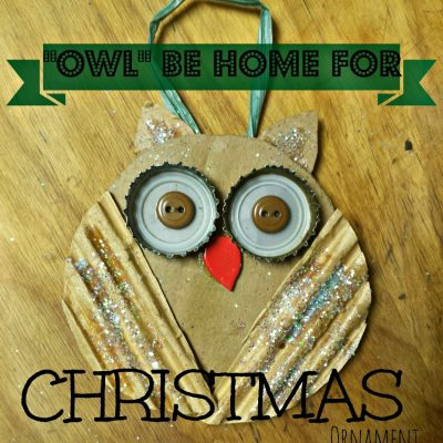 Make this cute 'Owl Be Home for Christmas' ornament with just a few craft supplies and items from your recycle. great kids craft. Find the full tutorial to waste not, want not on salvagesisterandmister.com