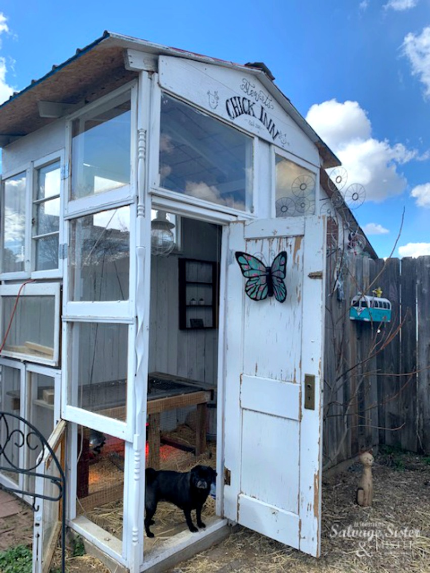 A DIY upcycled chicken coop from recycled windows on salvagesisterandmister.com