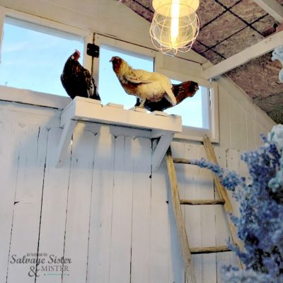 Chickens inside of a DIY upcycled chicken coop featured on salvagesisterandmister.com
