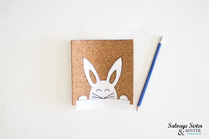 place bunny cutout on top of cork sheet