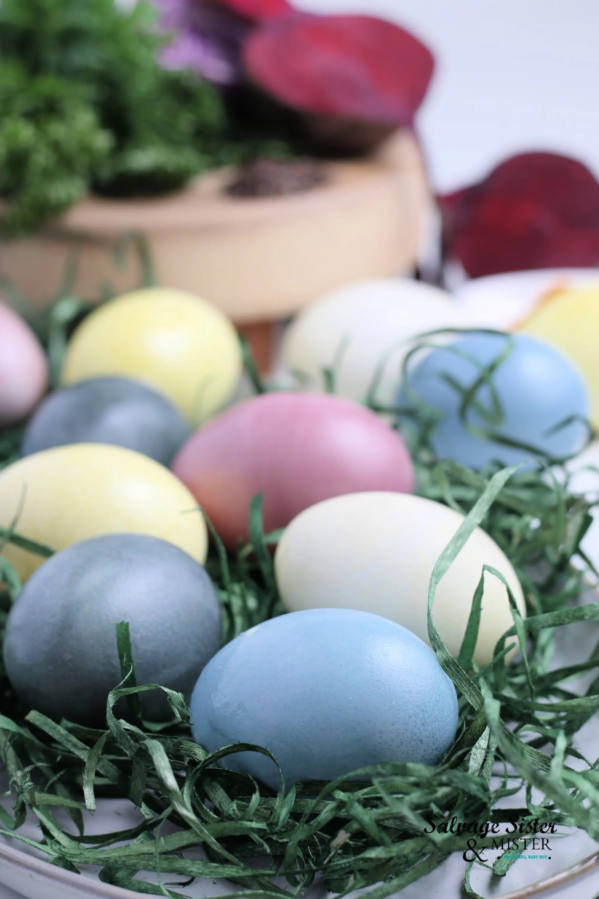 You can use natural ingredients to create Natural Dyed Eggs.