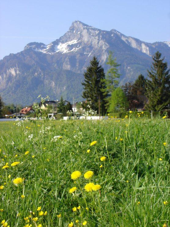 Salzburg and Environs 060