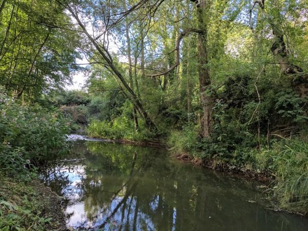 River Teise, Kent