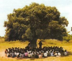 Palabres sous le manguier... (source inconnue - © Droits réservés)