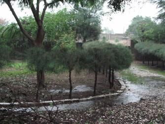 Pluie sur N'Dangane et le Mazet