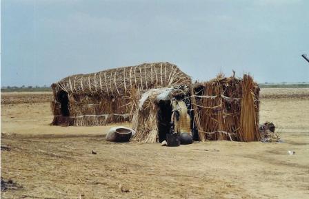 broussarde-village-peul-case