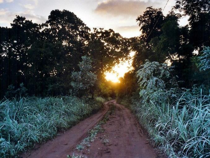 Lever de soleil sur la brousse de Missirah