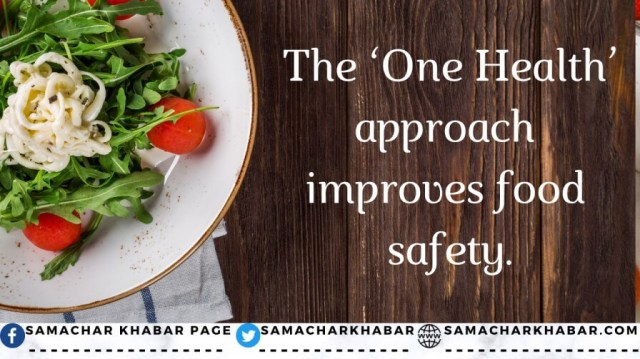 World Food Safety Day Quotes 2021