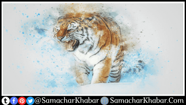 International Tiger Day 2021 Theme