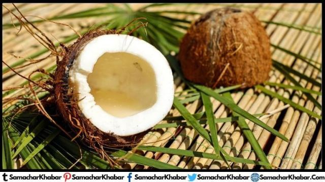 When is World Coconut Day celebrated