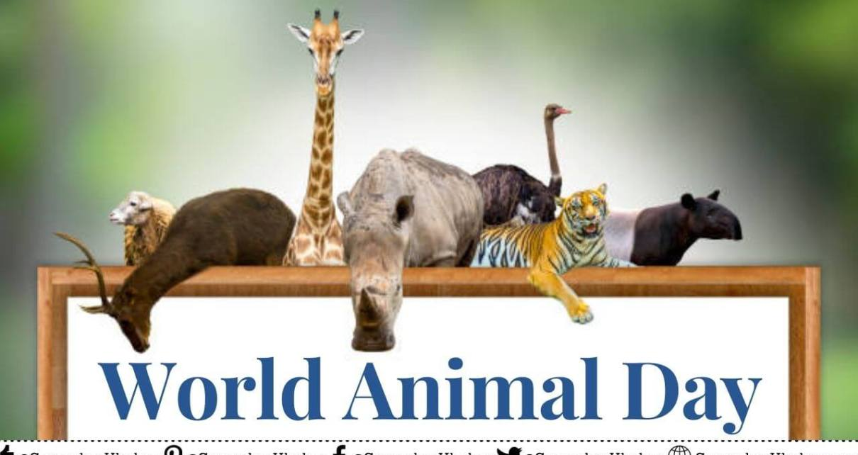 World Animal Day 2021 Date, History, Theme, Quotes, Celebration
