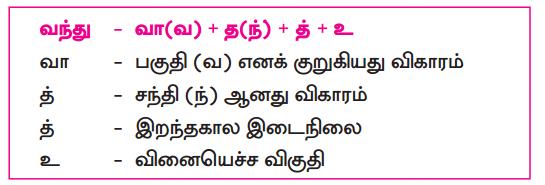Samacheer Kalvi 10th Tamil Guide Chapter 3.2 காசிக்காண்டம் - 2