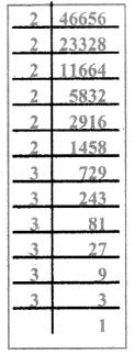 Samacheer Kalvi 8th Maths Guide Answers Chapter 1 Numbers Ex 1.5 12
