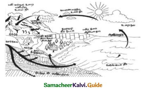 Samacheer Kalvi 9th Tamil Guide Chapter 2.6 துணைவினைகள் - 4
