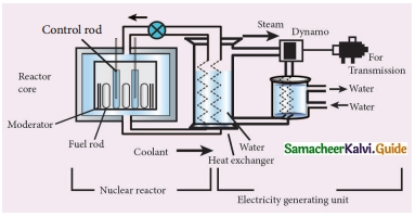Samacheer Kalvi 10th Science Guide Chapter 6 Nuclear Physics 11