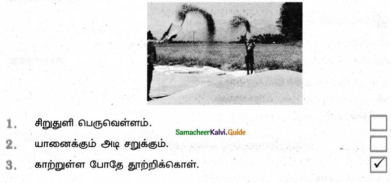 Samacheer Kalvi 4th Tamil Guide Chapter 5 பண்படுத்தும் பழமொழிகள் - 3