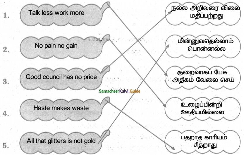Samacheer Kalvi 4th Tamil Guide Chapter 5 பண்படுத்தும் பழமொழிகள் - 8