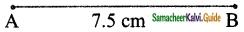 Samacheer Kalvi 6th Maths Guide Term 1 Chapter 4 Geometry Ex 4.1 3