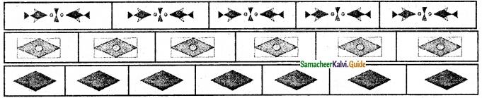 Samacheer Kalvi 6th Maths Guide Term 3 Chapter 4 Symmetry Ex 4.2 4