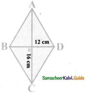 Samacheer Kalvi 8th Maths Guide Answers Chapter 5 Geometry Ex 5.3 13