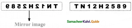 Samacheer Kalvi 8th Maths Guide Answers Chapter 7 Information Processing Ex 7.3 20
