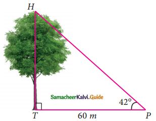 Samacheer Kalvi 9th Maths Guide Chapter 6 Trigonometry Ex 6.4 3