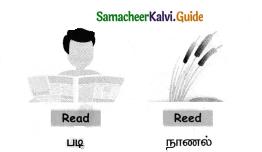 Samacheer Kalvi 4th English Guide Term 1 Prose Chapter 2 Do it yourself 10