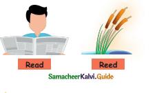 Samacheer Kalvi 4th English Guide Term 1 Prose Chapter 2 Do it yourself 7