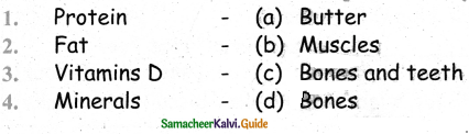 Samacheer Kalvi 4th Science Guide Term 1 Chapter 4 science in everyday life 6