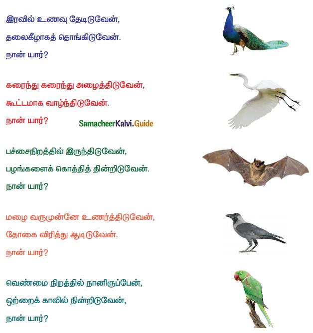 Samacheer Kalvi 4th Tamil Guide Chapter 21 காட்டுக்குள்ளே பாட்டுப்போட்டி 1