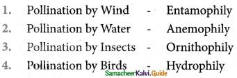 Samacheer Kalvi 5th Science Guide Term 2 Chapter 3 Plants 4