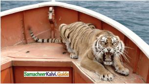 Samacheer Kalvi 12th English Guide Supplementary Chapter 2 Life of Pi 2