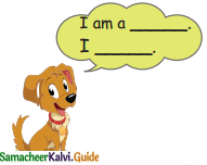 Samacheer Kalvi 4th English Guide Term 3 Supplementary 1 The mistaken plate 6