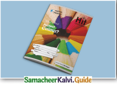 Samacheer Kalvi 7th English Guide Term 3 Prose Chapter 1 Journey by Train 5