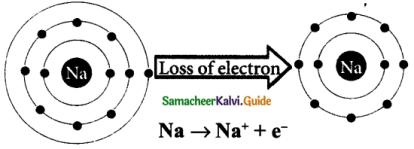 Samacheer Kalvi 9th Science Guide Chapter 13 Chemical Bonding 1