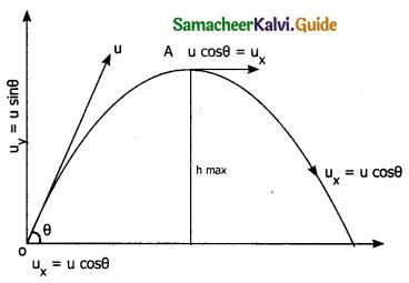 Samacheer Kalvi 11th Physics Guide Chapter 2 Kinematics 31