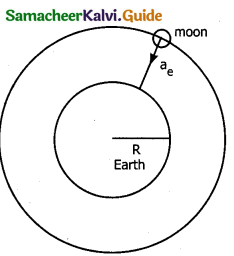 Samacheer Kalvi 11th Physics Guide Chapter 3 Laws of Motion 27