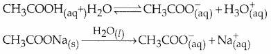 Samacheer Kalvi 12th Chemistry Guide Chapter 8 Ionic Equilibrium 60