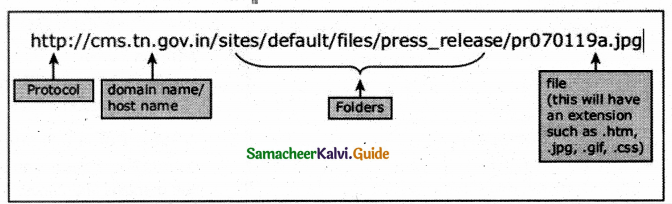 Samacheer Kalvi 12th Computer Applications Guide Chapter 12 DNS (Domain Name System) 1