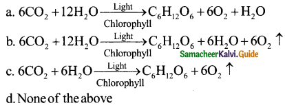 Samacheer Kalvi 11th Bio Botany Guide Chapter 13 Photosynthesis 2