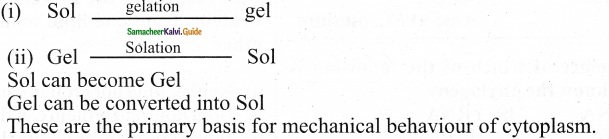 Samacheer Kalvi 11th Bio Botany Guide Chapter 6 Cell The Unit of Life 1