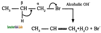 Samacheer Kalvi 11th Chemistry Guide Chapter 12 Basic Concepts of Organic Reactions 10