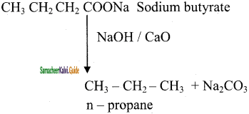 Samacheer Kalvi 11th Chemistry Guide Chapter 13 Hydrocarbons 65
