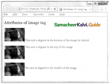 Samacheer Kalvi 11th Computer Applications Guide Chapter 12 HTML – Adding Multimedia Elements and Forms 8