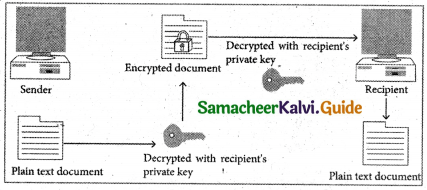 Samacheer Kalvi 11th Computer Applications Guide Chapter 17 Computer Ethics and Cyber Security 13