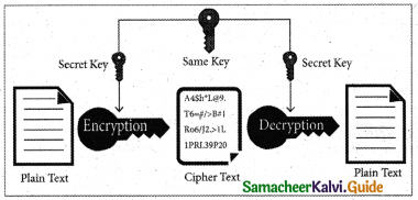 Samacheer Kalvi 11th Computer Applications Guide Chapter 17 Computer Ethics and Cyber Security 2